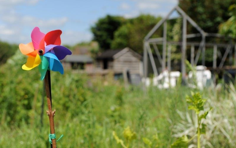National Allotments Week 2014