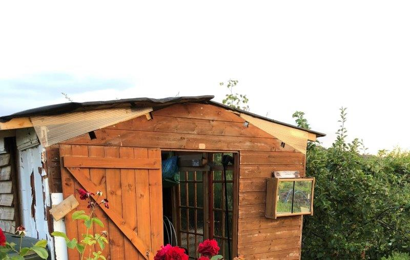 Allotment Shed of the Year